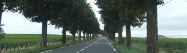サンセールへの道、フランス、France